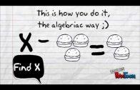 Algebra-Ce este algebra?