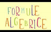 Algebra notiuni de baza
