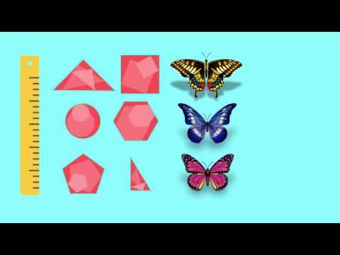 Geometria Introducere